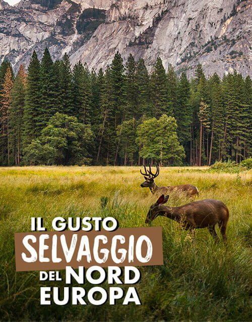 nordic beef jerky: carne secca dal nord europa